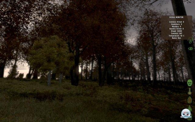 Screenshot - ArmA II (PC) 2367582