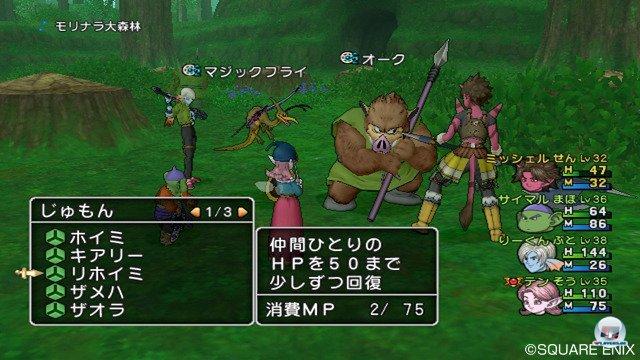 Screenshot - Dragon Quest X Online (Wii) 2295662
