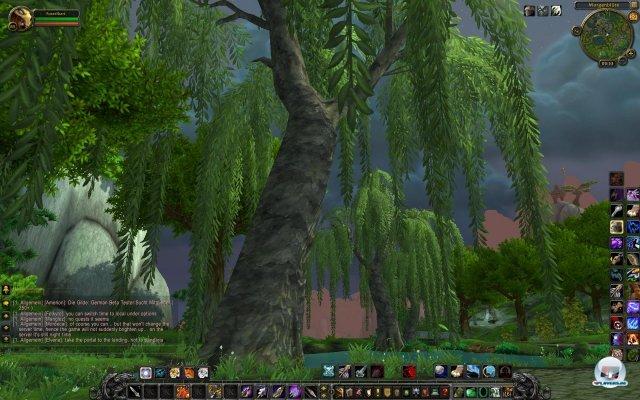 Screenshot - World of WarCraft: Mists of Pandaria (PC) 2334037