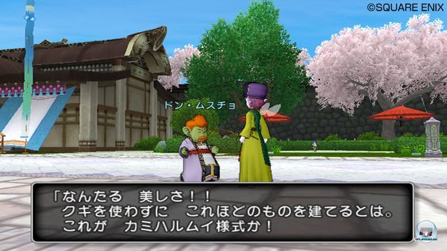 Screenshot - Dragon Quest X Online (Wii) 2277642