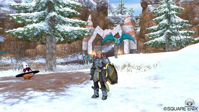 Screenshot - Dragon Quest X Online (Wii) 2273477